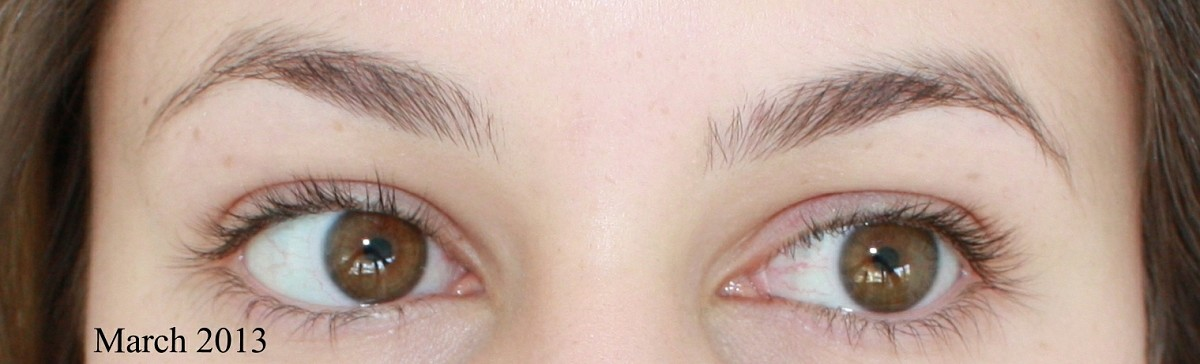 Growing Out The Brows Picture Timeline And Tips Blog Shameless