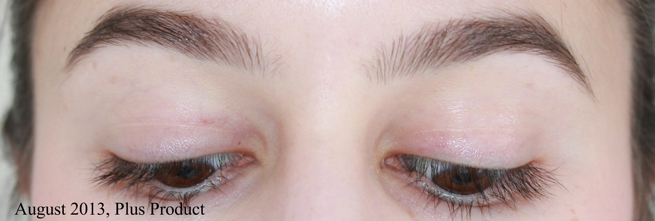 how to trim bushy eyebrows. growing out the brows: picture timeline and tips blog - shameless fripperies how to trim bushy eyebrows